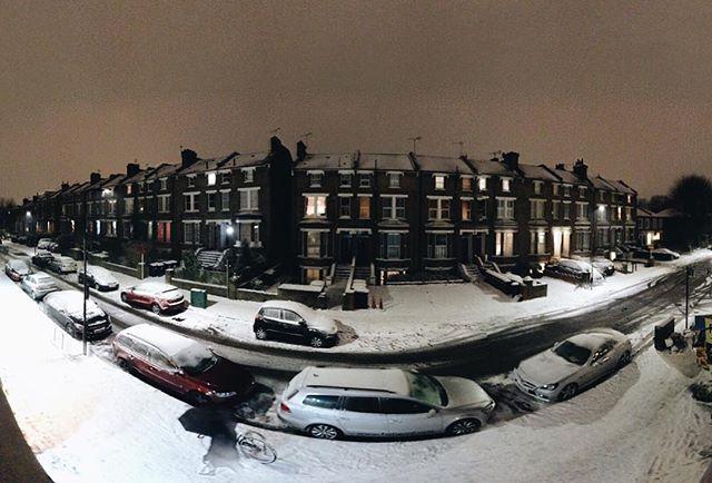Snow on the Grove