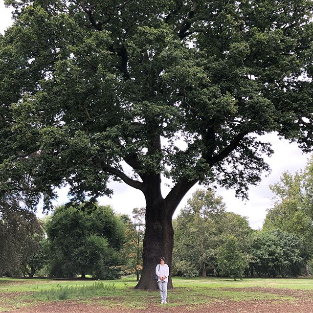 Greetings from Kew